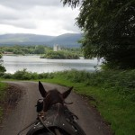 Horse and cart jaunting trip near Killarney