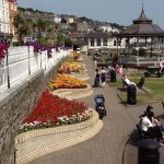 Flowers in Cobh